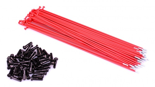 Rant STEEL Spokes Red
