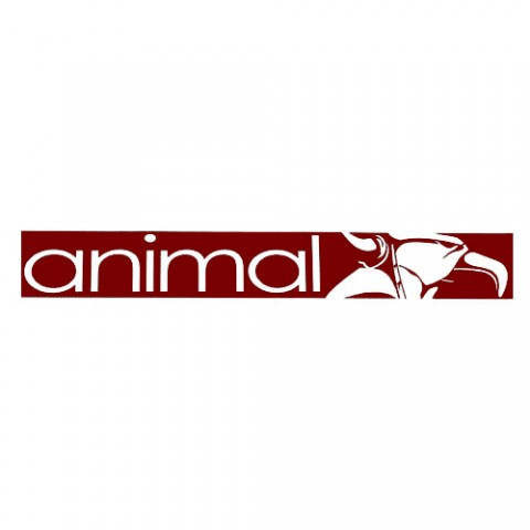 Animal STREET Sticker Maroon